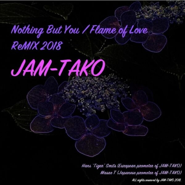 Cover art for Nothing but You / Flame of Love (Remix)